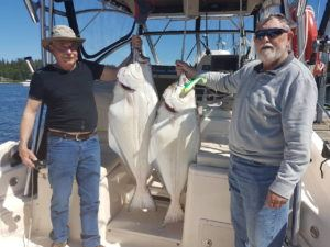 mega-bite-catching-halibut