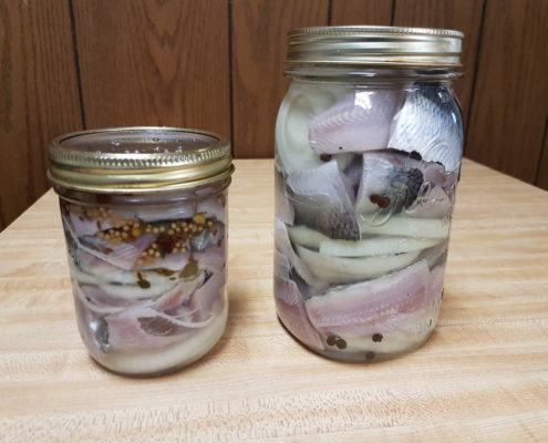 pickled-herring-finished-product